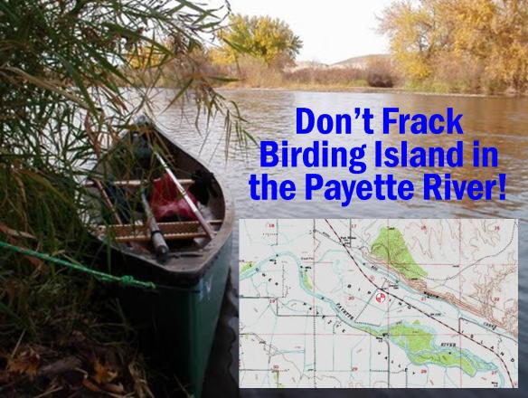 Don't Frack Birding Island