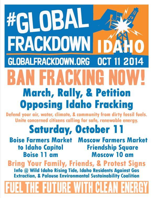 Global Frackdown Idaho Flyer