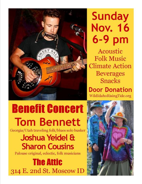 Acoustic Folk Benefit Concert Flyer